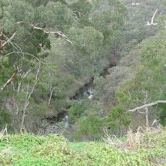 Middle Gorge Park