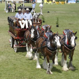 Whittlesea Agricultural Show